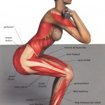 Position pour le squat