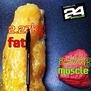 2.27kg de graisse à gauche et 2.27kgs de muscle à droite