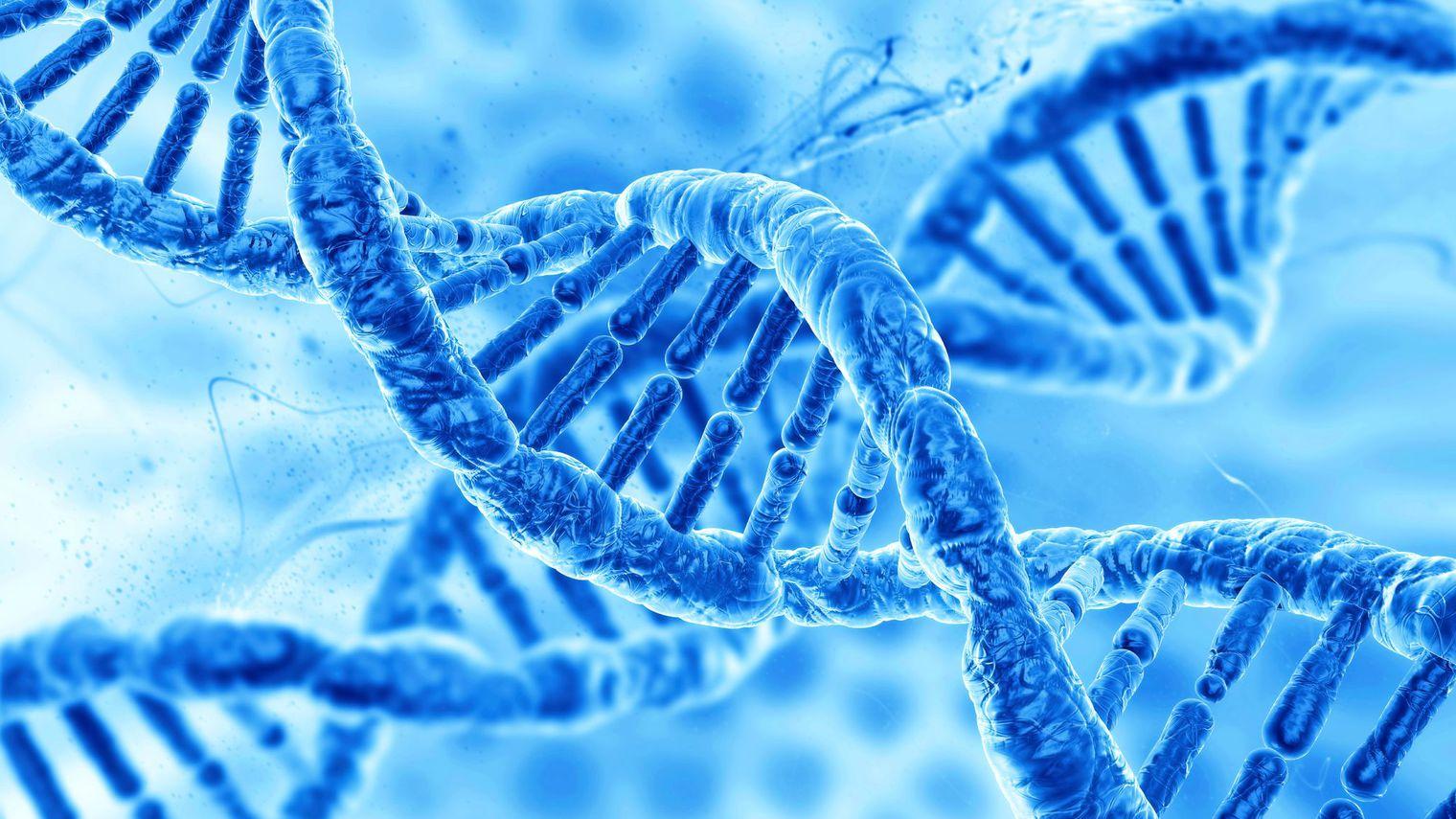 La faute à une bonne génétique ? vraiment ?